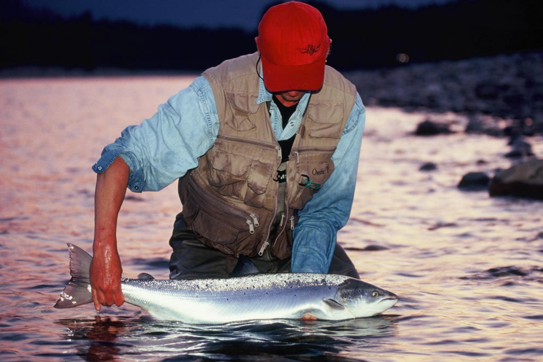 Gaula River-Norway Freshwater fishing guided trips, vacations, and