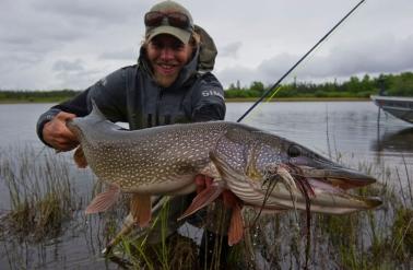 Alaskan Pike Fishing Nirvana On The Innoko River Holidays Where
