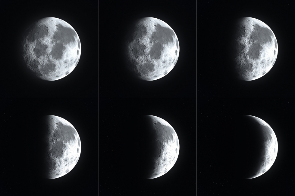 Moon Phases | Resources | Where Wise Men Fish